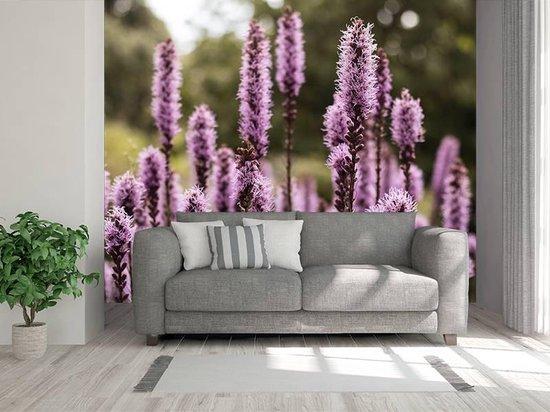 Bol Com Professioneel Fotobehang Stengels Met Paarse Lavendel Paars Sticky Decoration