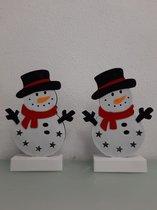 2 staande sneeuwpoppen met licht