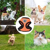 Hondentuig- hondentuigjes kleine hond-hondentuigjes puppy-Kattenspeeltjes-kat-dog-Kattenharnas-kattentuigje -kattentuigje met looplijn-maat -Oranje L