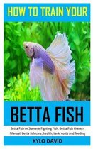 How to Train Your Betta Fish