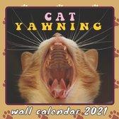 Cat Yawning Wall Calendar 2021