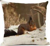 Kussenhoes: eekhoorn in de sneeuw, fotograaf Heidie Mulder