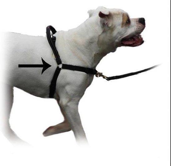 Mazter hondentuig - anti-trektuig voor honden
