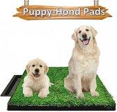 Life Happiness - Indoor Hondentoilet - Kunstgras - Huisdierentoilet - Zindelijkheidstraining - Honden toilet  - Kattentoilet - 63x51x6cm - Puppytoilet -TikTok.