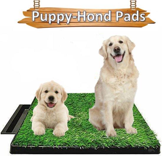 Life Happiness - Indoor Hondentoilet - Kunstgras - Huisdierentoilet - Zindelijkheidstraining - Honden toilet - Huisdieren - Kattentoilet - 63x51x6cm - Puppytoilet - Kattenbak - Konijnentoilet - TikTok.