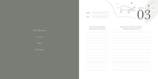 Mijn eerste jaar boek - collectie Eclipse - invulboek van 0 tot 1 jaar