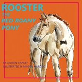Rooster the Red Roany Pony