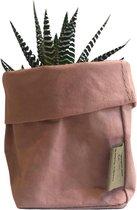 de Zaktus - Haworthia big band - cactus - paper bag roze - maat M