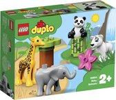 Afbeelding van LEGO DUPLO Babydieren - 10904