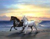 Paarden in zee - Diamond Painting 50x40 cm (volledige bedekking) inclusief premium tools
