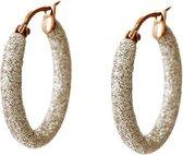 Viva Jewellery strass oorringen klein white opal