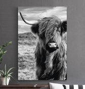 HIP ORGNL Highlander   Schotse hooglander / koe  wanddecoratie   80 x 120 cm   schilderij   dibond   zwart / wit / dieren   kunstwerk   jungle   dieren schilderijen