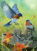 Vitamo™ Diamond Painting 40x50 cm - Compleet pakket - Vierkante steentjes - Volledige bedekking - Dieren - Bloemen en planten - Kleurrijke vogels