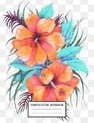 Composition Notebook: Back to School Flower Notebooks for Students