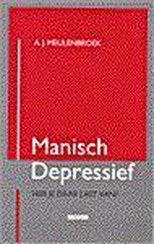 Manisch depressief - Aloys Meulenbroek pdf epub