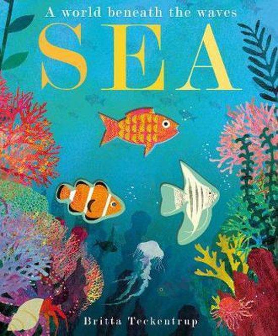 Boek cover Sea van Patricia Hegarty (Hardcover)