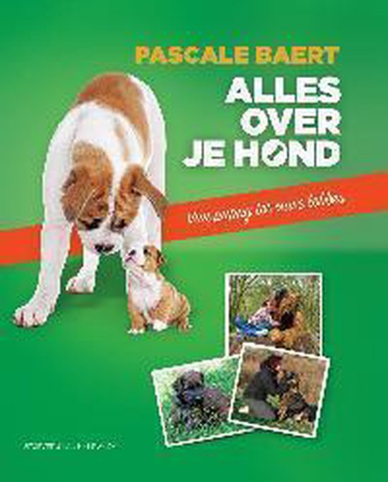 Alles over je hond - Pascale Baert |