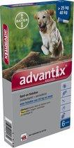 Bayer Anti vlooienmiddel en tekenmiddel hond Advantix Spot On 400/2000 40 - 60 kg - 6 pipetten