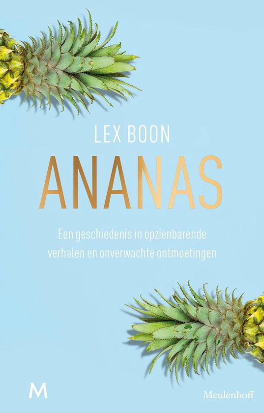 Ananas - Lex Boon |