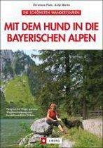 Mit dem Hund in die Bayerischen Alpen