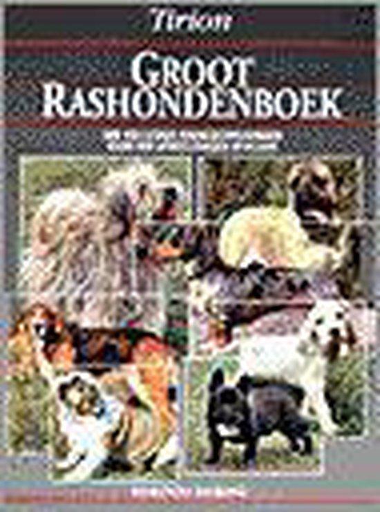 GROOT RASHONDENBOEK - Fiorone | Readingchampions.org.uk