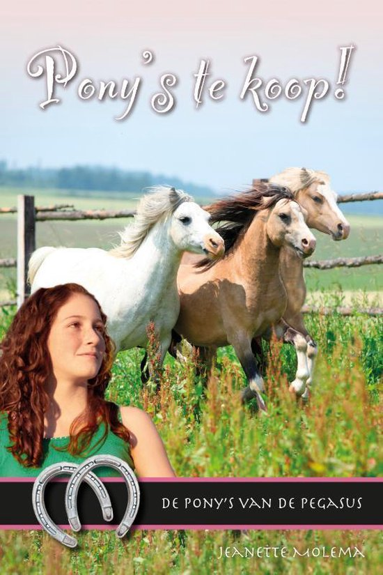 De pony's van de Pegasus 12 - Pony's te koop! - Jeanette Molema | Readingchampions.org.uk