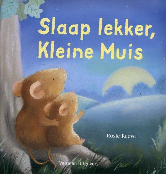 Slaap Lekker, Kleine Muis - R. Reeve |