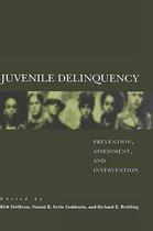 Omslag Juvenile Delinquency