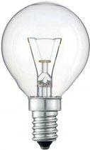 Kogellamp Gloeilamp - 40 Watt Helder E14 - (10 stuks)