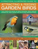 A Practical Illustrated Guide to Attracting & Feeding Garden Birds