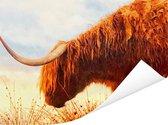 Schotse hooglander met mooie oranje tinten Poster 40x30 cm - klein - Foto print op Poster (wanddecoratie woonkamer / slaapkamer) / Wilde dieren Poster