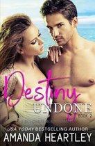 Destiny Undone Book 2