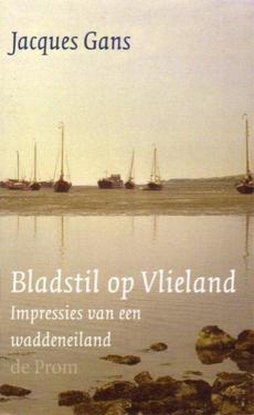 Bladstil Op Vlieland - Jacques Gans |