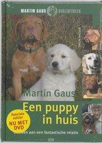 Een Puppy In Huis Met Dvd