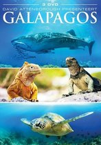 Special Interest - Galapagos