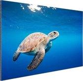 Schildpad in de oceaan Aluminium 60x40 cm - Foto print op Aluminium (metaal wanddecoratie)