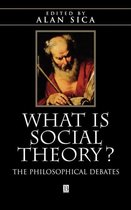 What is Social Theory?