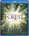Once Upon A Forest (Vlaamse Versie) (Blu-ray)