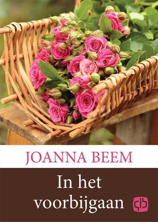 In het voorbijgaan - Joanna Beem |