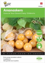 Buzzy® Ananaskers