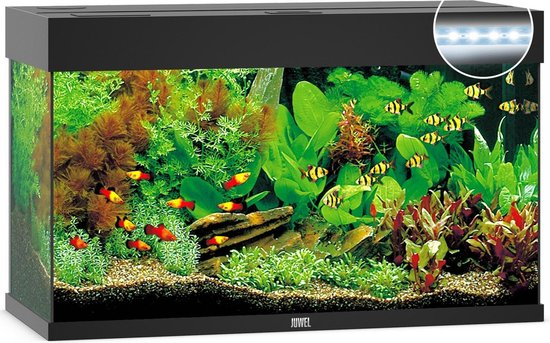 Juwel Rio 125 LED Aquarium - Zwart - 125L - 81 x 36 x 50 cm
