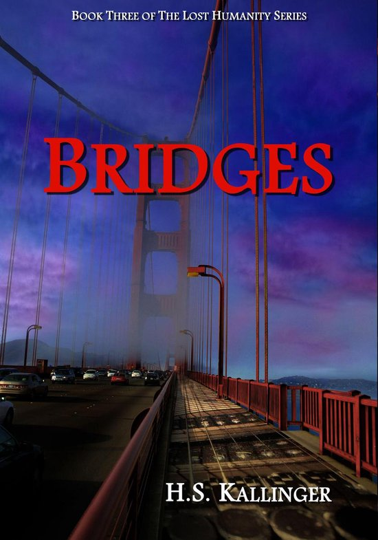 Omslag van Bridges