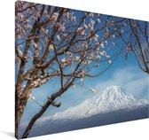 De besneeuwde Ararat berg in Azië Canvas 180x120 cm - Foto print op Canvas schilderij (Wanddecoratie woonkamer / slaapkamer) XXL / Groot formaat!