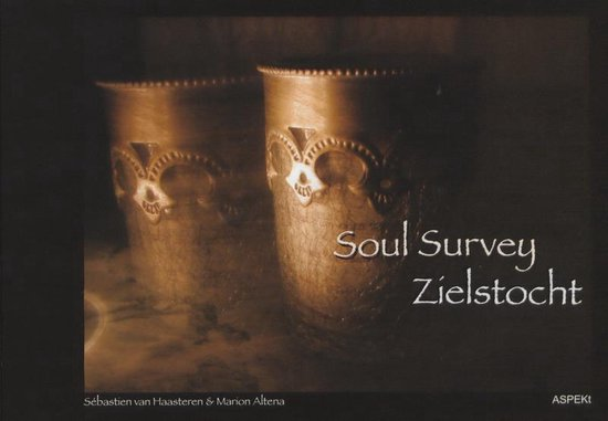Soul Survey / Zielstocht - M. Altena | Fthsonline.com