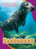 Leven onder de zeespiegel  -   Zeehonden