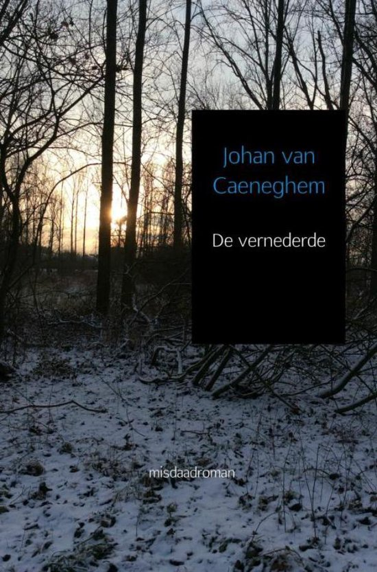 De vernederde - Johan van Caeneghem | Fthsonline.com