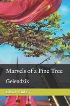 Marvels of a Pine Tree