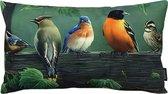 Painted Birds / Vogels Kussenhoes | Katoen / Linnen | 30 x 50 cm