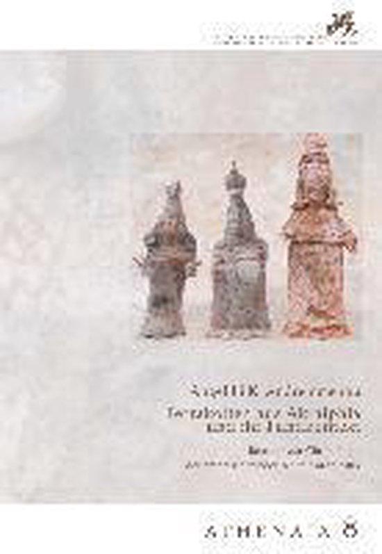 Boek cover Terrakotten Aus Akraiphia Und Ihr Fundkontext van Angeliki K Andreiomenou (Paperback)