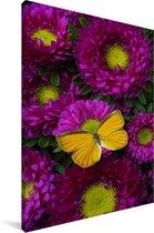 Een oranje vlinder op Aster bloemen Canvas 60x90 cm - Foto print op Canvas schilderij (Wanddecoratie woonkamer / slaapkamer)